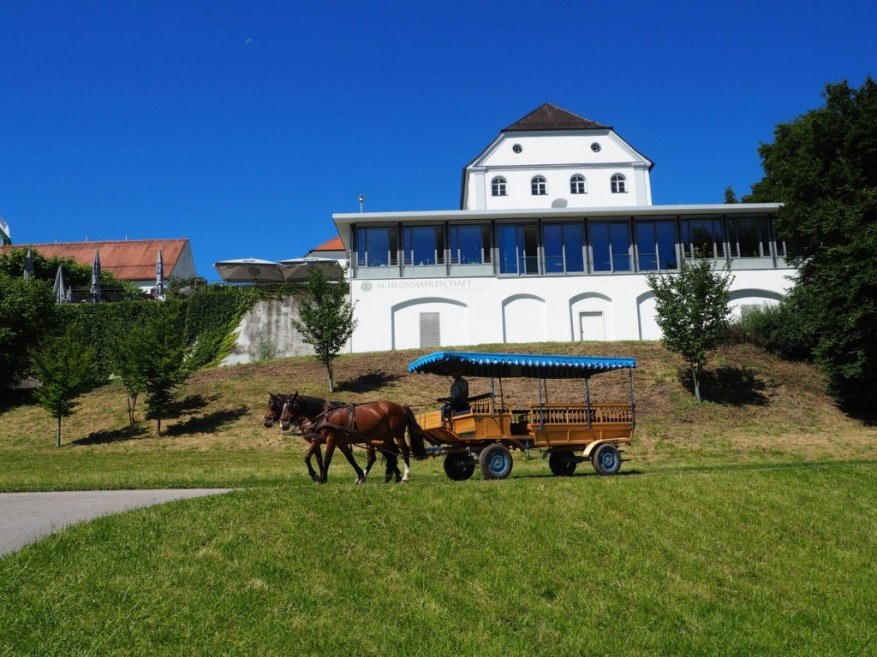 Chiemsee Sommer (11)