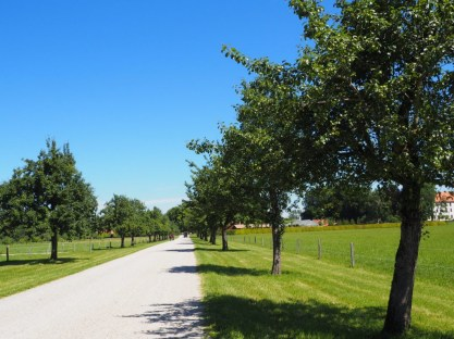 Chiemsee Sommer (19)