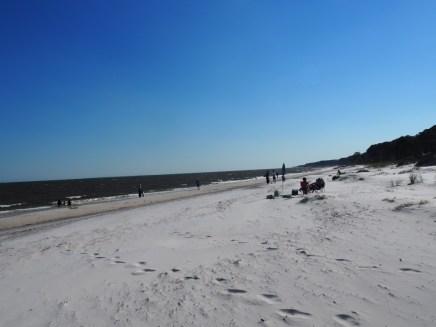 Forgotten Coast (56)