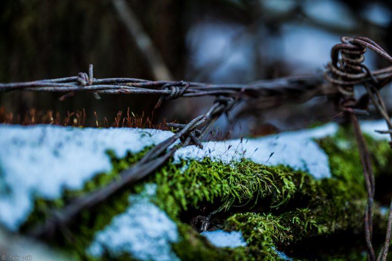 Cold wire.