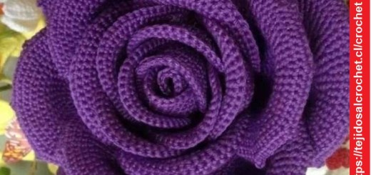 Rosa Lila Crochet