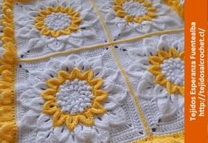 Tutorial crochet para manta