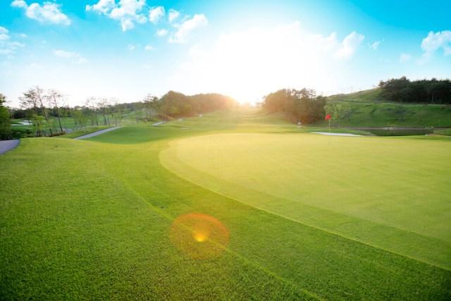 ゴルフ場経営を目的とする地上権設定契約及び土地賃貸借契約と借地借家法の地代等増減額請求(最高裁平成25年1月22日第三小法廷判決)