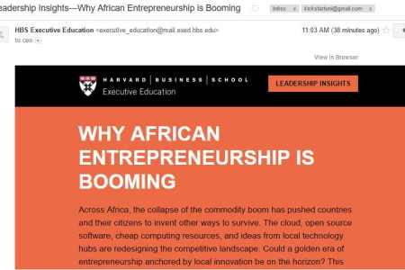 Harvard Leadership Insights—Why African Entrepreneurship is Booming by Ndubuisi Ekekwe