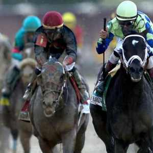 Why Unanimous A.I. Failed In Predicting Kentucky Derby Winners