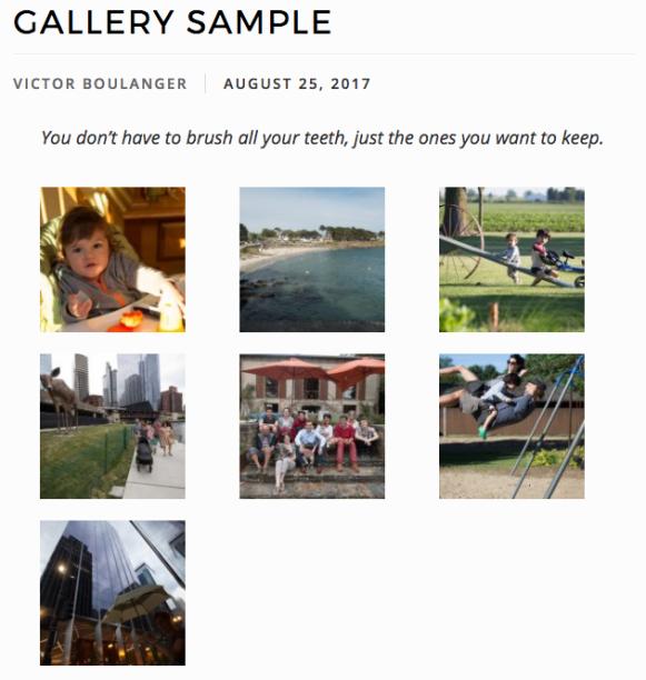 Ultimate Guide to WordPress Website - Photo Gallery Regular Thumbnail Grid