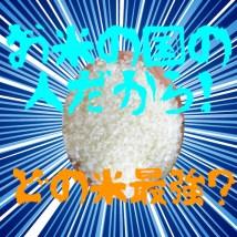 お米の国の人だから知っておきたいどの米が最強?