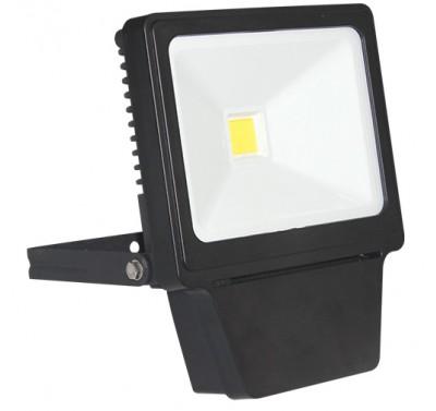 LED COB 50W BL 6000K