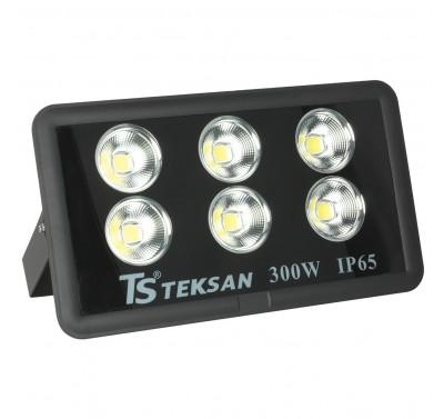 LED TS008 300W 6000K