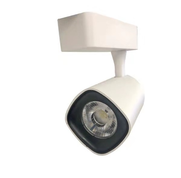 Track Light White 30W 6000K