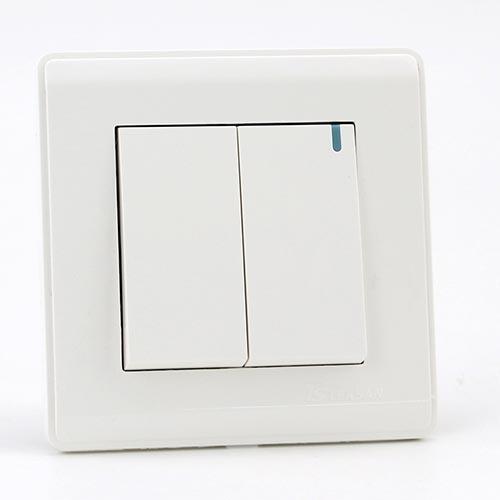 PRIME WHITE 2 GANG Two way switch (TS) 100