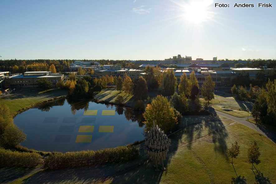 Umeå universitets huvudcampus