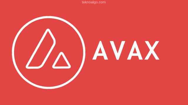 Avax Ccoin Nedir ?