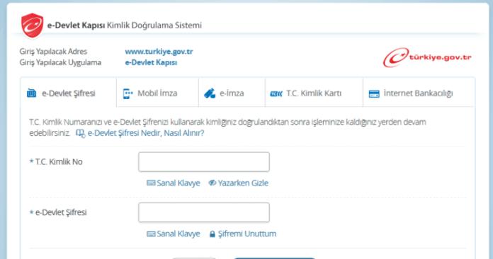 e-devlet şifresi