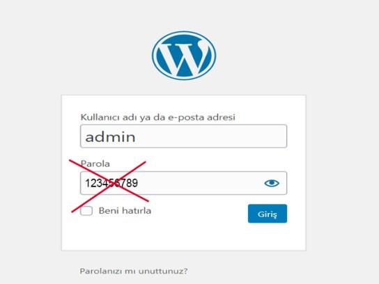 wordpress-şifre-koymak