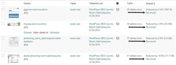 2020 wordpress görsel optimizasyonu