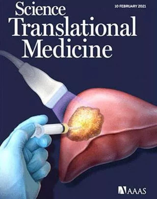 Türk bilim insanı Prof. Dr. Rahmi Öklü Geliştirdiği Sıvı ile Kanserli Dokuyu Yok Etti