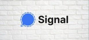 WhatsApp Sözleşmesinden Sonra Signal En İyi Uygulamalara Girdi