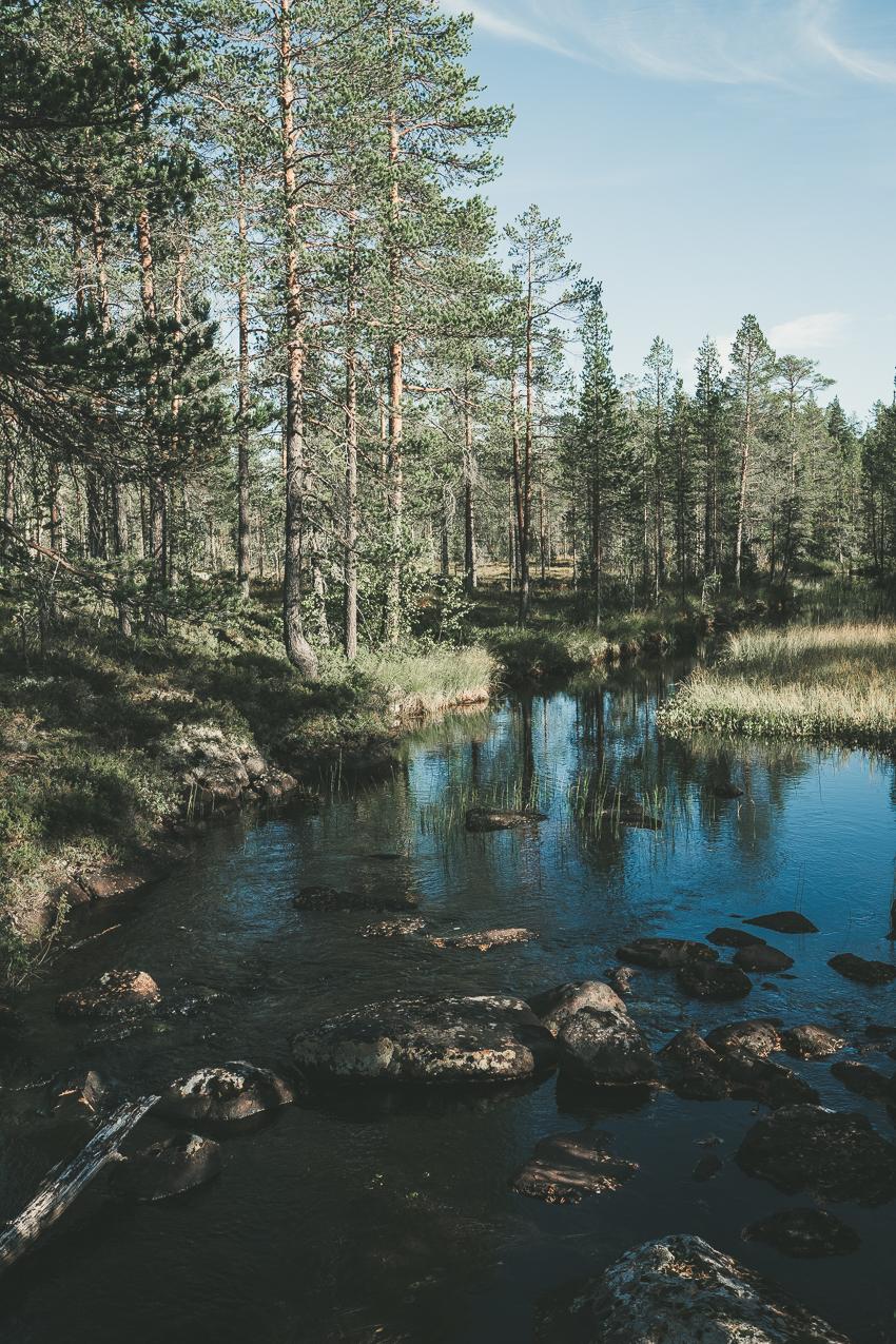 160908_hus30_fotograf_ulrica_hallen_fujifilm_sarna_njupeskar_fulufallen_friluftsliv_vandring-1084