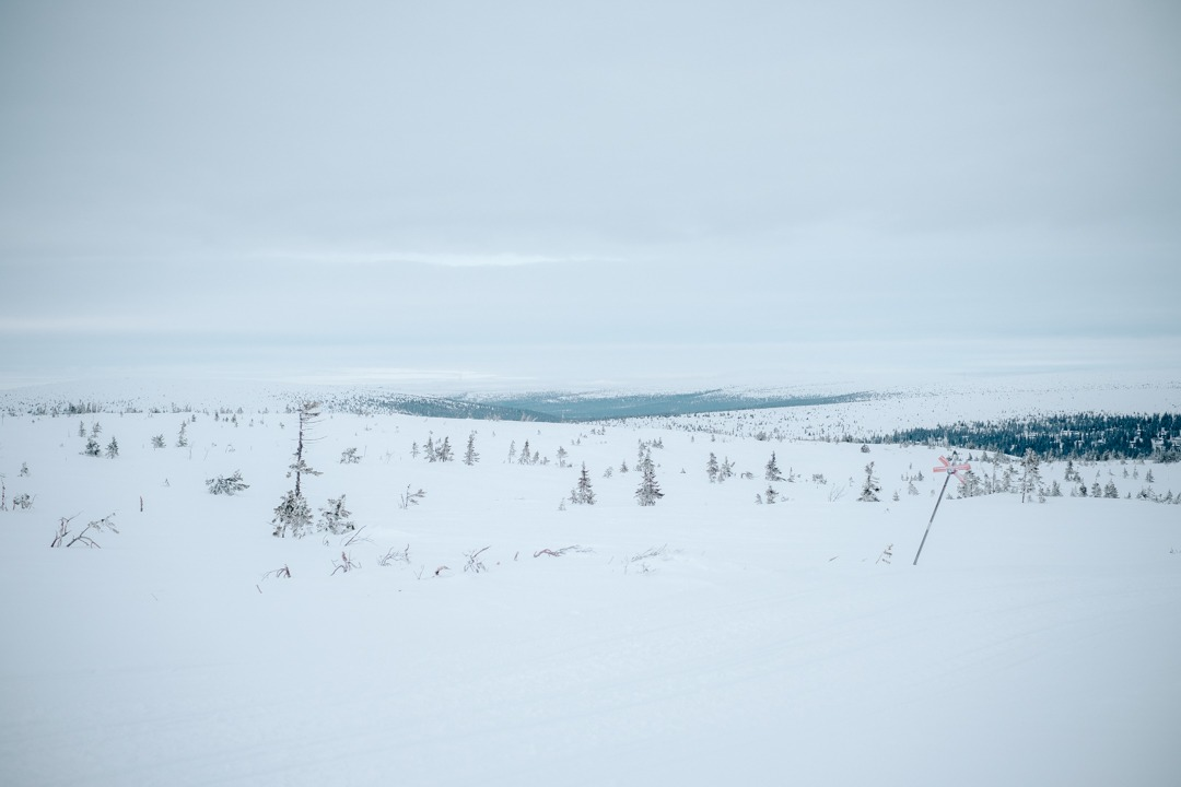 Åka skidor i Lindvallen med Skistar, boende i Fågelboet på Sälfjällstorget