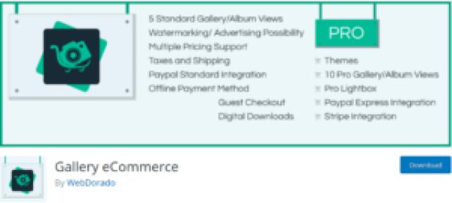 Gallery eCommerce Tekraze