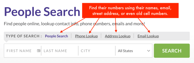 multiple search options