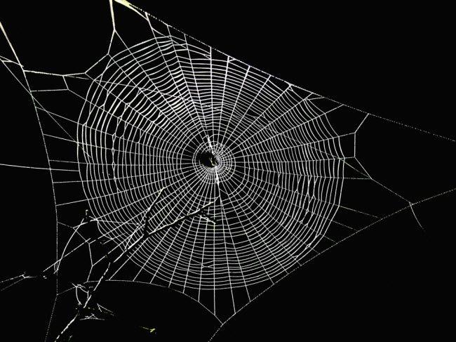 The Darknet Hell Forum Timeline Revisited ~ TekSec