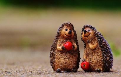Morsomme dikt – 30 morsomme dikt som får deg til å le
