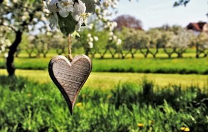 Vårdikt – 23 flotte og stemningsfulle dikt om vår
