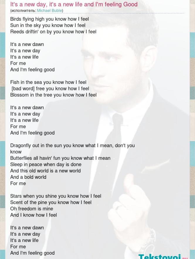 Birds In The Sky You Know How I Feel Michael Buble Best Bird