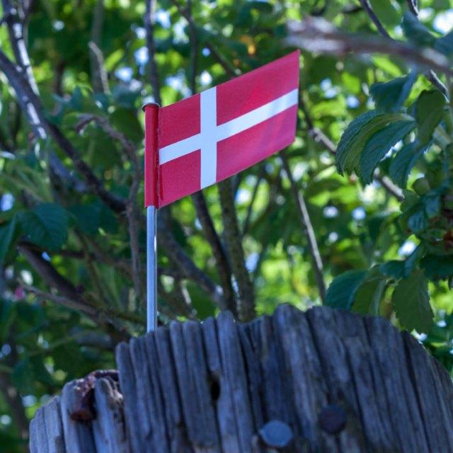 Kreml-venlige nyheder når også Danmark