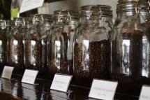 種類も個性も豊富なコーヒー