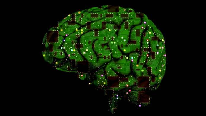 Foto de un cerebro