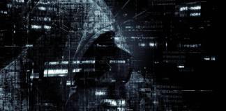 hacking-ant