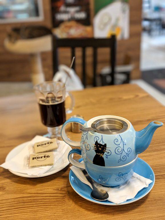 cat cafe budapest