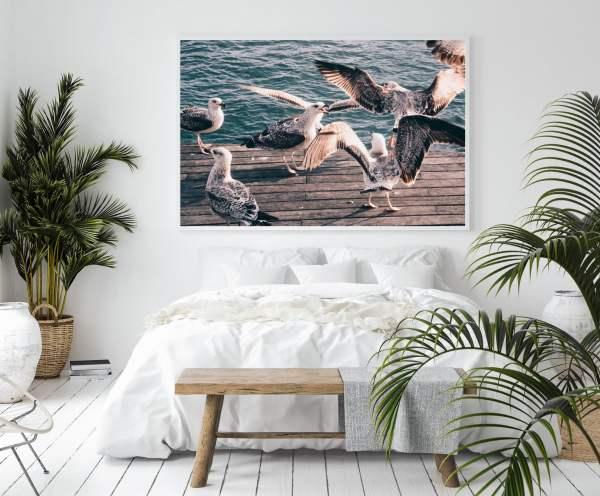 seagulls wall print barcelona