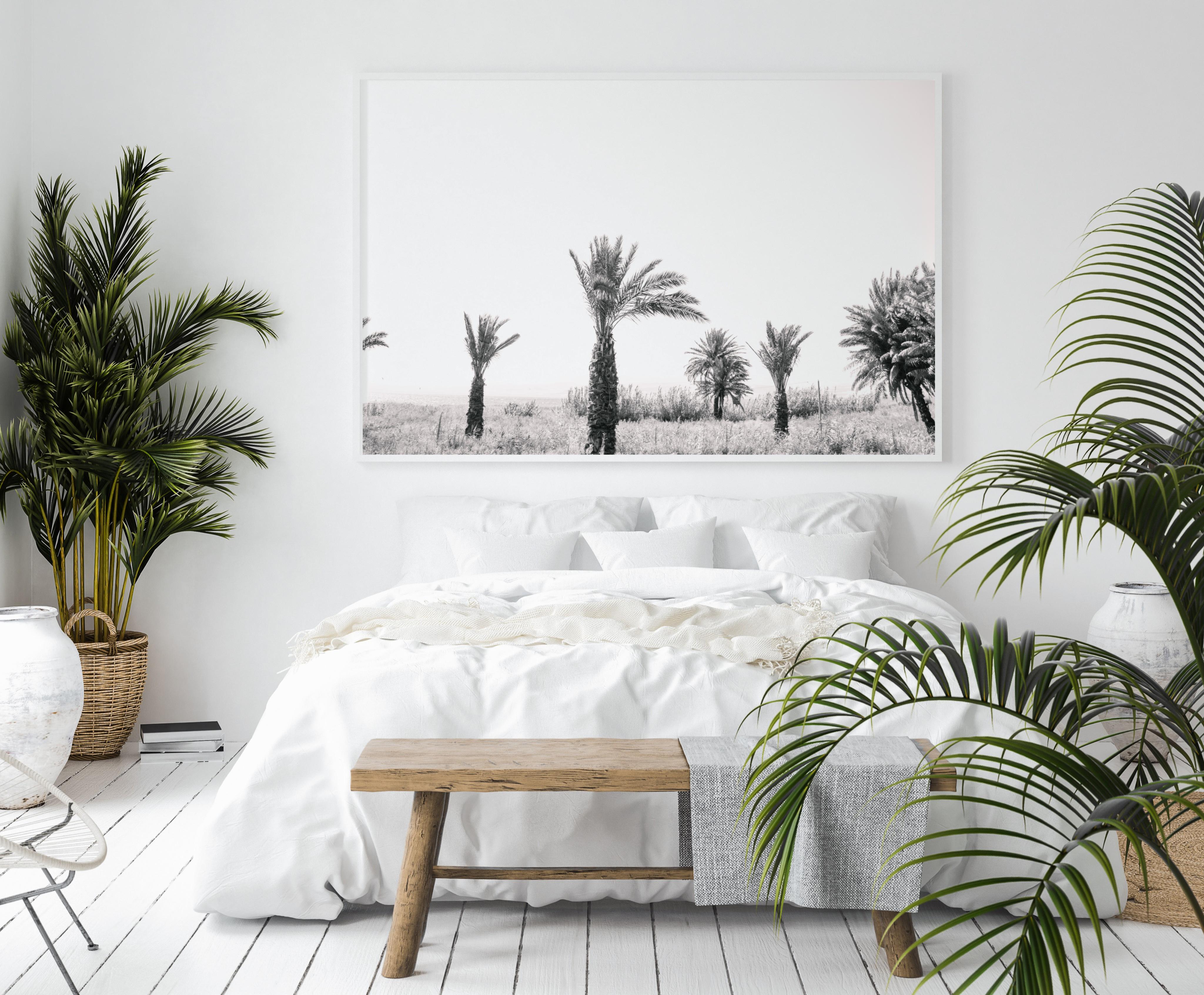 palm trees black white wall print