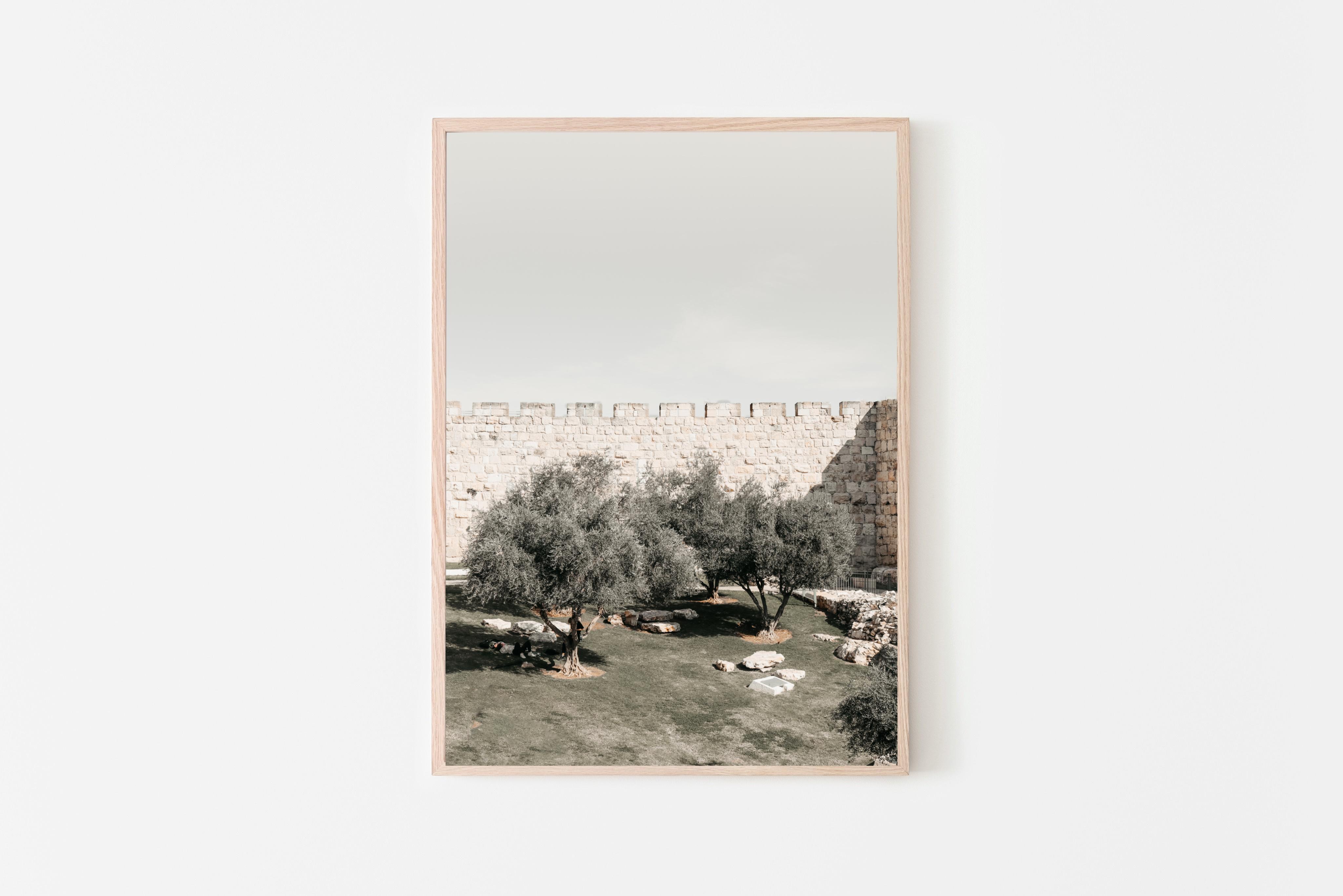 הדפס דיגיטלי להורדה של צילום של ירושלים עם עצי זית. פריט דקורטיבי לעיצוב הבית. תמונה מקורית שצולמה על ידנו. ניתן להדפסה במדפסת ביתית או בבית דפוס, למסגר אותו ולתלות על הקיר :) זמין להורדה מידית