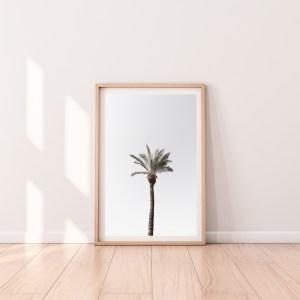 palm tree israel wall print