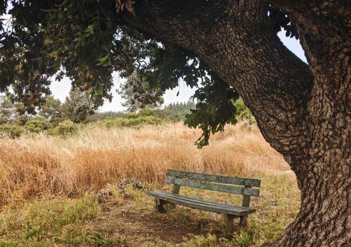 hiking trails in Israel