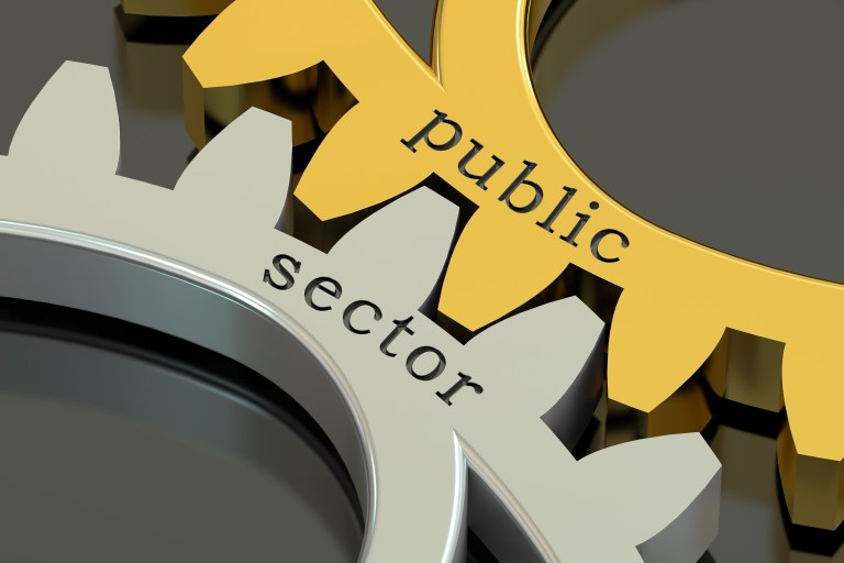 English for the Public Sector