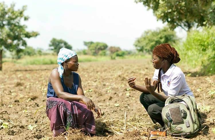 agriculture digital africa