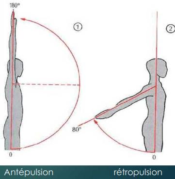 Antépulsion et rétropulsion