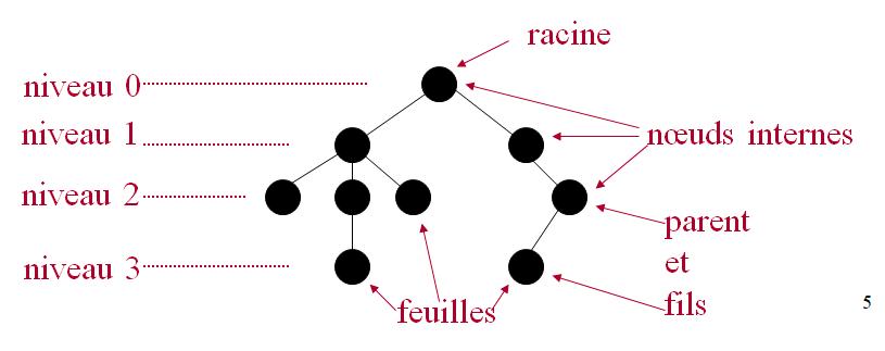 Les arbres ont des noeuds internes et des  feuilles  Cours d'Algorithmique