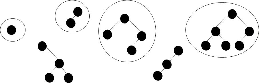AVL Trees algorithme