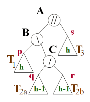 Rééquilibrage de l'arbre  AVL avec une double rotation  (gauche sur B et ensuite droite sur A)