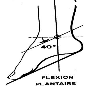 Extension ou flexion plantaire