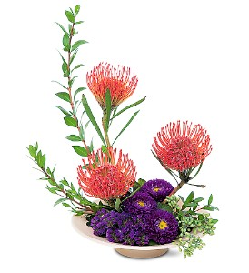 Pincusion Protea from Down Under are stunning combined with purples!