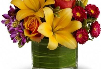 William S Florist Gift House Inc West Seneca Ny