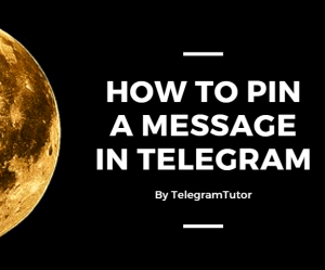 How to Pin a message in Telegram | Android and iOS Devices